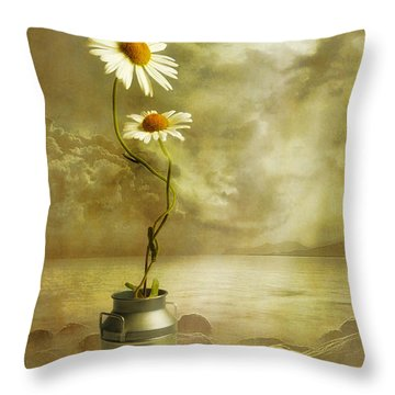 Daisies Throw Pillows
