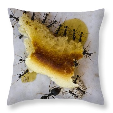 Together We Are Strong Throw Pillow by Heiko Koehrer-Wagner