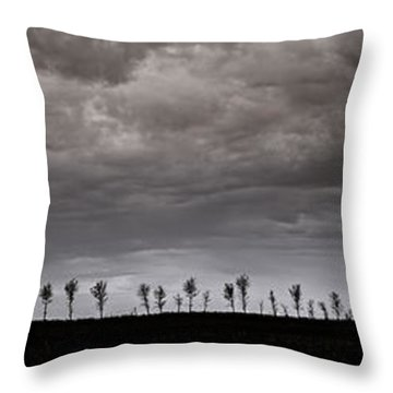 Together We Shall Stand Throw Pillow