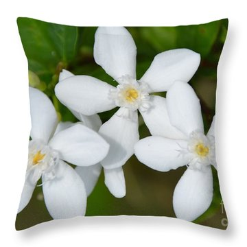 Throw Pillow featuring the photograph Togetherness by Darla Wood