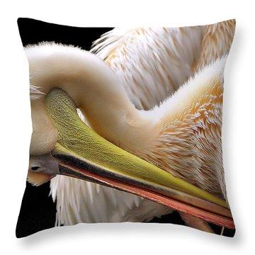 Pelicans Throw Pillows