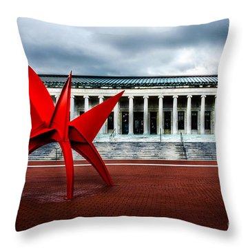 Toledo Museum Throw Pillow