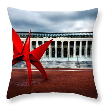 Toledo Museum Throw Pillow