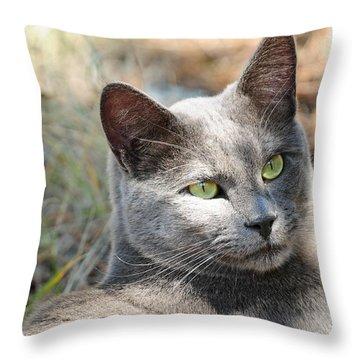 Tom Cat Throw Pillow