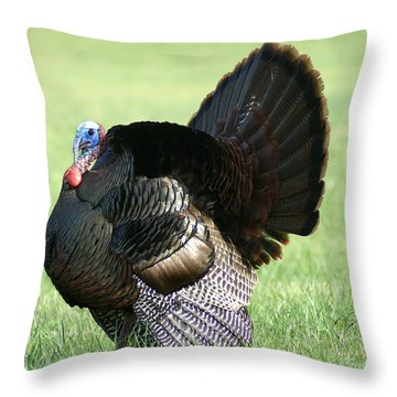 Tom Turkey Throw Pillow