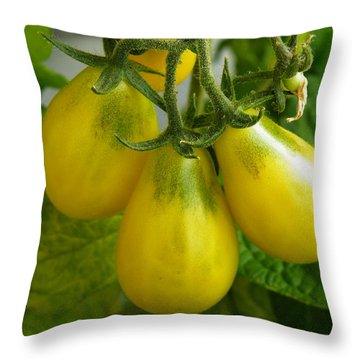 Tomato Triptych Throw Pillow by Brian Boyle