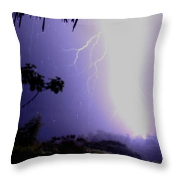 Too Close Throw Pillow by Bob Hislop