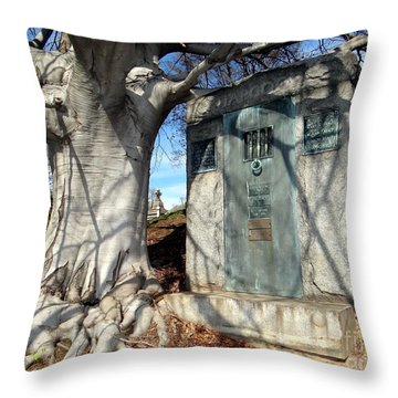 Too Close To Home Throw Pillow by Ed Weidman