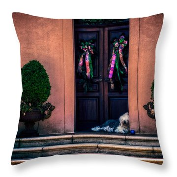 Too Hot To Fetch Throw Pillow by Melinda Ledsome