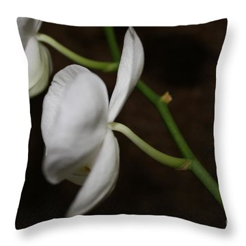 Too Orchid Throw Pillow by Cathy Dee Janes