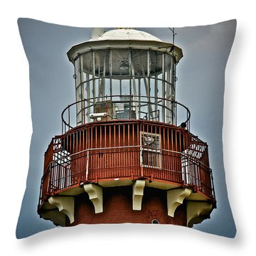 Top Of Barney 2012 Throw Pillow