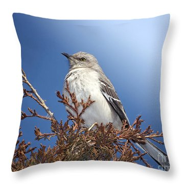 Top Of My Game Throw Pillow by Betty LaRue