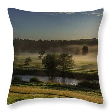 Top Of The Mornin' Throw Pillow by Tim Bryan