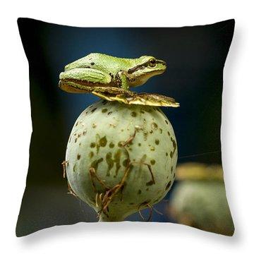 Topper Throw Pillow by Jean Noren