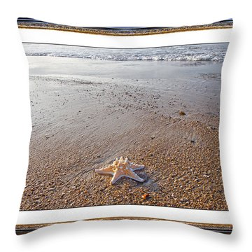 Topsail Island The Only One Throw Pillow by Betsy Knapp