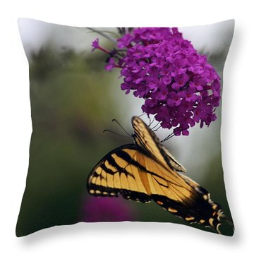 Topsy Turvy Throw Pillow by Judy Wolinsky