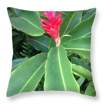 Throw Pillow featuring the photograph Torch Ginger by Alohi Fujimoto