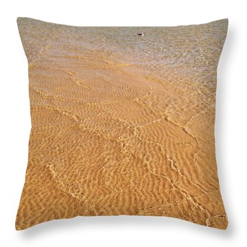 Torch Lake Sandbar Throw Pillow