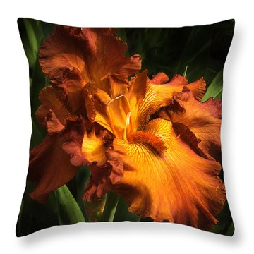 Torch Throw Pillow