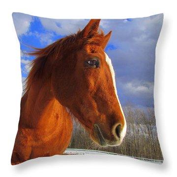 Tori Girl Throw Pillow by Elizabeth Dow