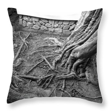 Tormented Trees Of Japan Throw Pillow by Daniel Hagerman