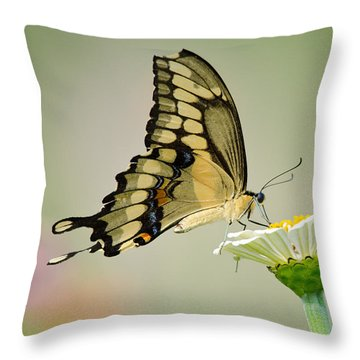 Torn Beauty Throw Pillow