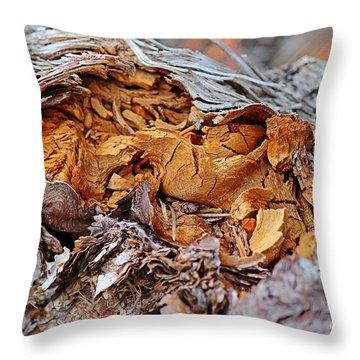 Torn Old Log Throw Pillow