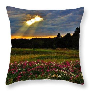 Torn Sky Throw Pillow