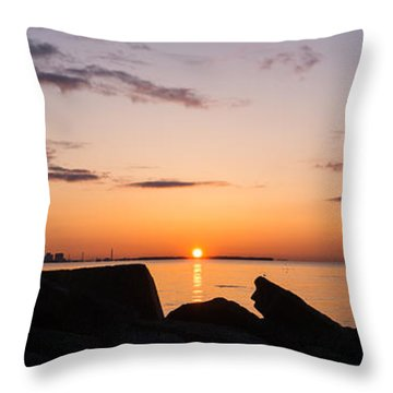 Toronto Skyline Panorama At Sunrise Throw Pillow by Georgia Mizuleva