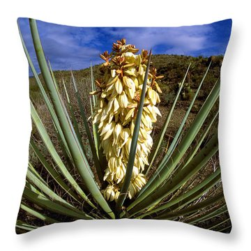 Torrey Yucca In The Chisos Mountains Throw Pillow