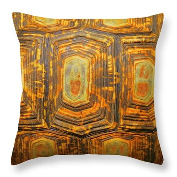 Tortoise Abstract Throw Pillow