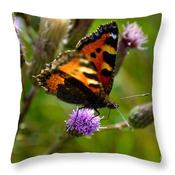 Tortoise Shell Butterfly Throw Pillow by Scott Lyons