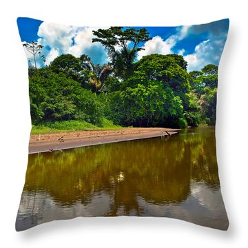 Tortuguero River Canals Throw Pillow by Gary Keesler