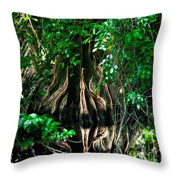 Tortuguero River Throw Pillow by Gary Keesler