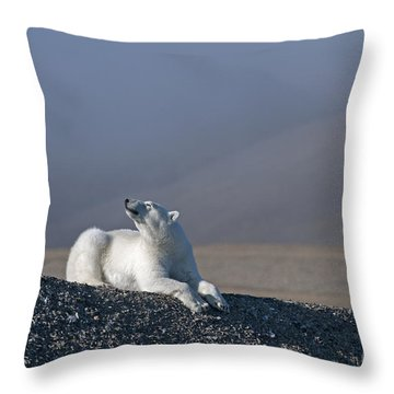 Total Bliss.. Throw Pillow