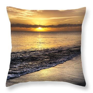 Total Serenity Throw Pillow by Debra and Dave Vanderlaan