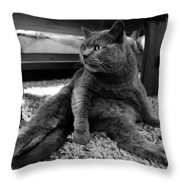 Throw Pillow featuring the photograph Totally Relaxed by Laura Melis