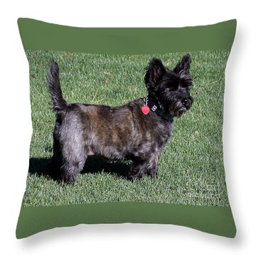 Toto's Sister Sweetpee Throw Pillow