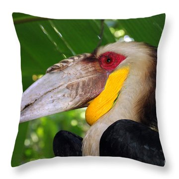 Toucan Throw Pillow by Sergey Lukashin