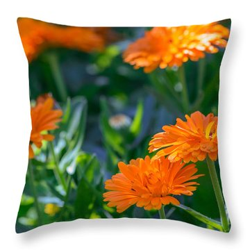 Touch By Light Throw Pillow