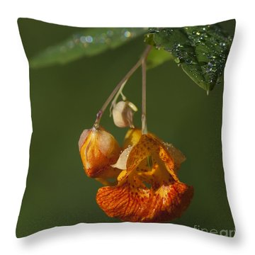 Touch Me Not.. Throw Pillow