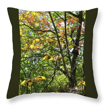 Touch Of Autumn Throw Pillow by Ann Horn