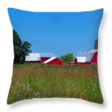 Throw Pillow featuring the photograph Touch Of Color by Dave Files