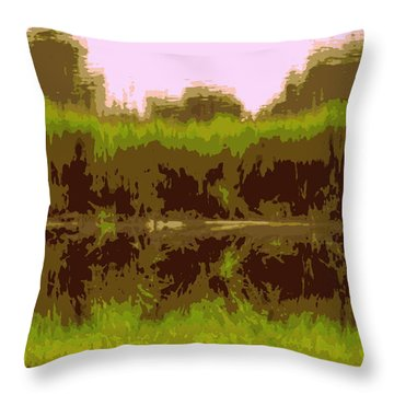 Touch Of Pink Ashley Throw Pillow