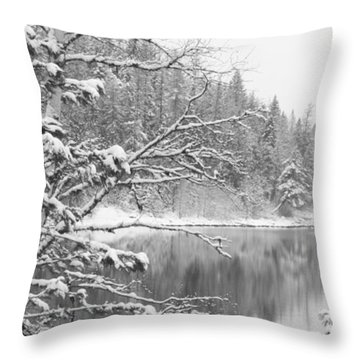 Touch Of Winter Throw Pillow by Diane Bohna