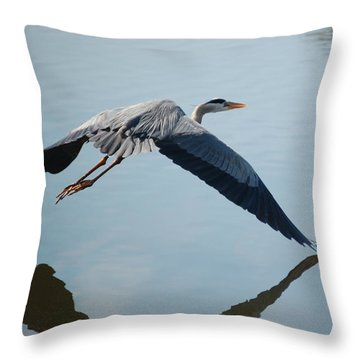 Touch The Water With A Wing Throw Pillow by Randy J Heath