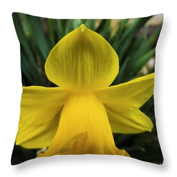 Throw Pillow featuring the photograph Touched By An Angel by Robyn King