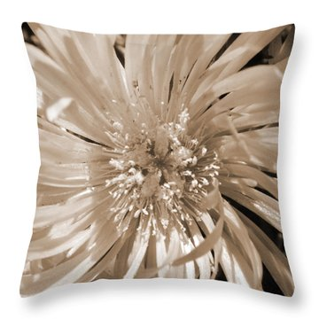 Touched By Light Throw Pillow by Leana De Villiers