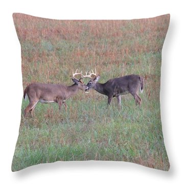 Touching Moment Throw Pillow by Dan Sproul