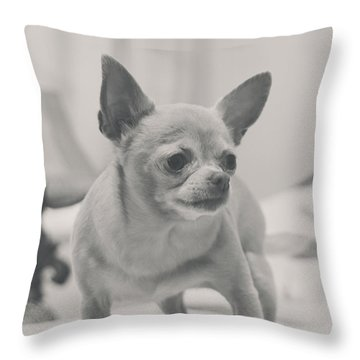 Tough Girl Throw Pillow by Laurie Search